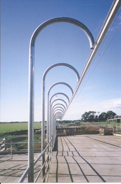 Rotary Milking Platforms